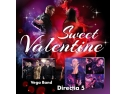 sambata. Concerte live de Ziua Indragostitilor: Vega Band & Directia 5