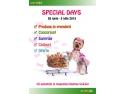 empatia fata de animale. Animax Special Days