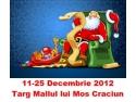 the mall. Targ online de Craciun 2012