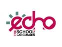 limba e. Echo - Cursuri de limba araba
