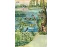 inventar. Malul lacului - Habitat - specii