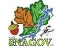 padure de foioase. La Snagov, din ianuarie 2013 - liber la infractiuni si distrugerea patrimoniului natural protejat,din aria naturala protejata ANPLS, facilitat de MMSC