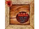 fuga de acasa. Hara isi lanseaza albumul de colinde acasa la fani!