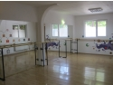 pictura terapeutica. Studio Galapagos organizeaza cursuri de balet, actorie si pictura pentru copii
