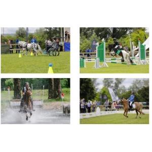 Poneii si caii au fascinat publicul la prima ediție a Karpatia Pony Show!