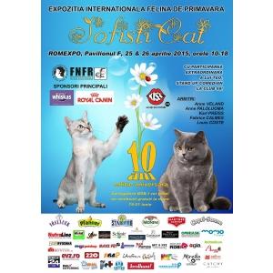 Pisici de zece! Expozitia internationala Felina de Primavara – SofistiCAT