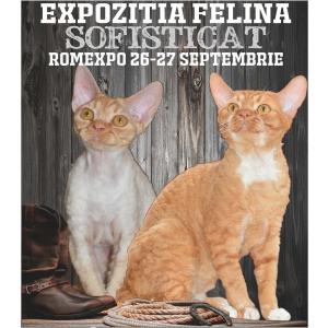 WESTERN SofistiCAT cu pisici la ROMEXPO!
