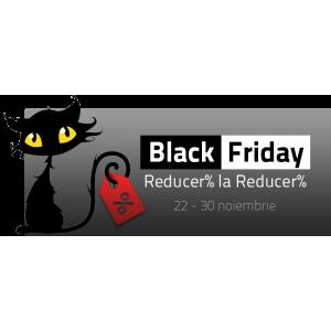 reduceri. Black Friday la www.101jucarii.ro