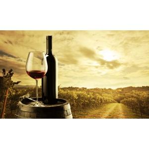 premium wines. Grupul Halewood Wines Romania a redus cu 50% timpul de prelucrare si organizare a datelor in urma utilizarii solutiei CPM de la Senior Software