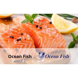 ocean fish. Ocean Fish si-a imbunatatit activitatea cu solutiile Senior Software