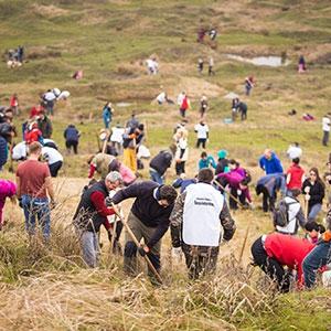 Promisiunile se onorează – voluntarii JYSK România dublează suprafața de pădure de la Șotânga