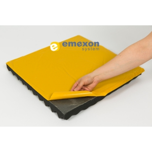 Emexon ofera solutii complete de izolatie fonica profesionala