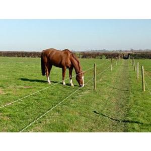 Gardul electric cu panou solar - o necesitate in fiecare ferma
