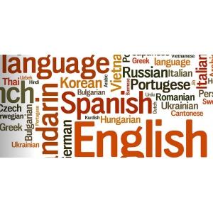 Inova, un sprijin real pentru varietatea de traduceri necesare