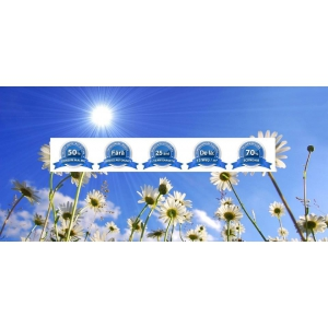 Panourile radiante ElectricSun, inovatie si eficienta in a crea confort termic in locuinte
