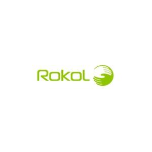 Rokol si oferta unuia dintre cele mai complexe si luxuriante tipuri de fotolii, RK 8900