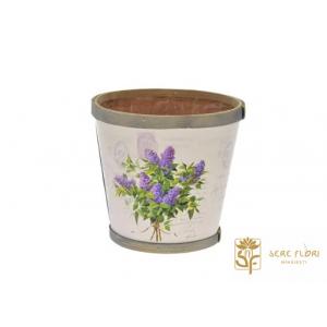 Sere Flori Mihaiesti - flori si produse pentru ingrijirea acestora