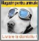 livrari la domiciliu Bucuresti. Magazin Online pentru animale! Livrare gratuita la domiciliu in Bucuresti!