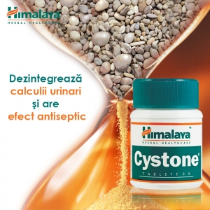 Cystone de la Himalaya – forta plantelor in combaterea calculilor si infectiilor urinare!