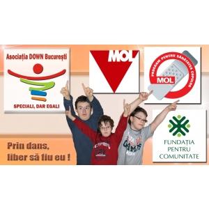 prin. Logo Proiect