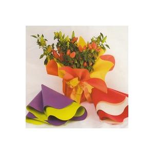Ce ambalaje sa folosesti pentru buchete de flori perfecte