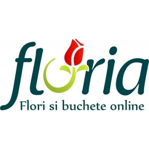 anul 2011. 2011 – Anul florariilor online