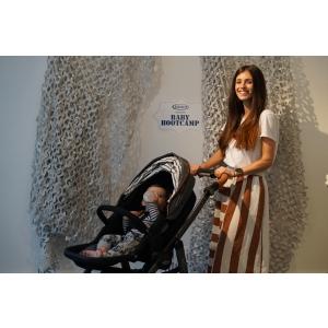 Carucioarele Evo: cele mai dorite modele de carucioare Graco le gasesti SIGUR la Babyboom!
