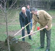 Friedrich Wille. Primarul Daniel Thellmann a plantat un stejar în amintirea scriitorului Friedrich Schiller