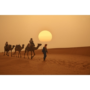 Urmează-ți dorințele și trăiește experiențe de călătorie inedite, doar cu Travelmood.ro