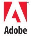 Adobe Intelligent Document Solutions