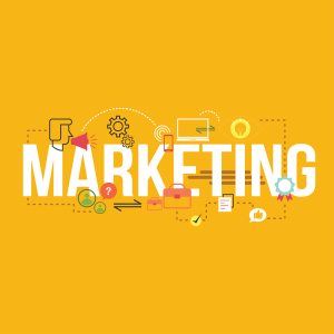 Marketing - Ecom Digital