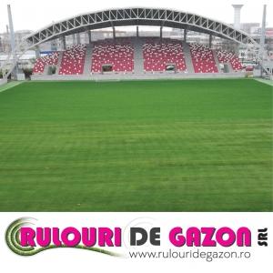 Rulouri de gazon - UTA Arad