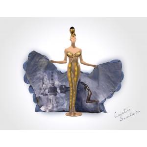 madame pogany. Costum de inspiratie nationala pentru Miss Universe 2012