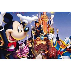 parcuri de distractii. Oferte Disneyland