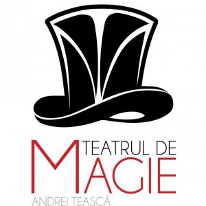 Teatrul de Magie - programul lunii ianuarie 2018