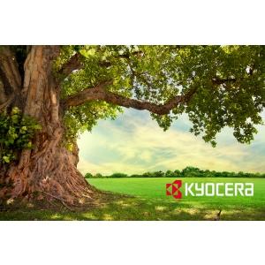Produsele ecologice castiga tot mai multi adepti