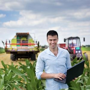 targ pentru agricultori. .