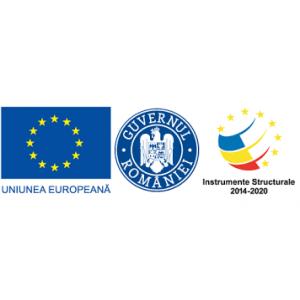"""""""Granturi pentru capital de lucru acordat IMM-urilor """" SC BLUE TRANS SPEDITION SRL"""