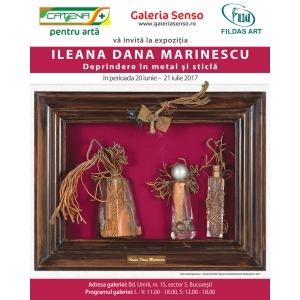 """dana afrasinei. Eveniment la Galeria SENSO - Vernisajul expoziției """"Deprindere în metal şi sticlă"""" de Ileana Dana Marinescu"""