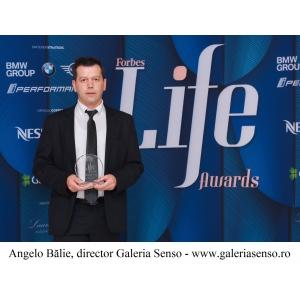 Galeria Senso, distinsă cu Premiul Forbes Good Life Art
