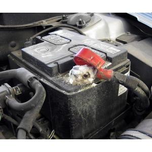 masinute cu baterii de 6 volti. Cum să nu te lași păcălit de cei care vând baterii auto