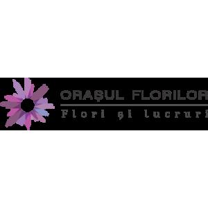 flori artificiale. logo florarie online OrasulFlorilor.ro