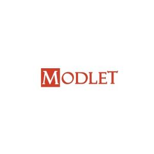 trend. Pantofii aurii - un nou trend lansat de Modlet.ro
