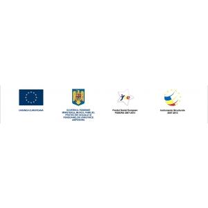 """incdmtm. Miercuri, 26 iunie 2013, a avut loc Conferinta de incheiere a proiectului """"Dezvoltarea educatiei pentru viabilizarea pietei muncii prin vectori inovatori Mecatronica-Integronica"""""""