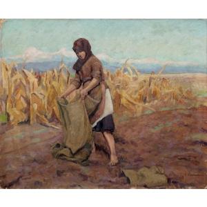 ressu. Camil Ressu - La marginea lanului