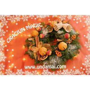 coronite. Specialitatea casei: coronite din brad natural cu scortisoara, conuri pudrate cu zapada, atentie pentru detaliu, nuci poleite, placerea de a crea, portocale uscate si numai ganduri bune.