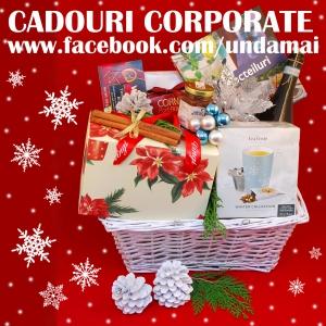 Cosuri cadou. Cadouri si cosuri cadou corporate pentru Craciun