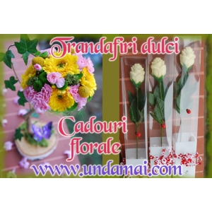 cadouri ciocolata. Trandafiri din ciocolata si cadouri florale pentru un 8 MARTIE minunat