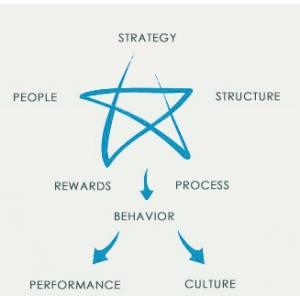 Organisational Design. modelul STAR