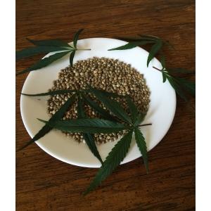 5 curiozitati legate de semintele de cannabis